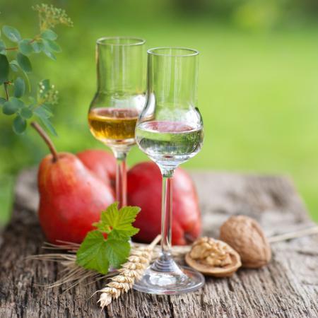 פוטנציאל אלכוהול בפירות ודגנים